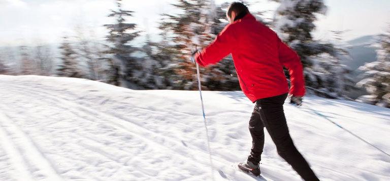 activit 233 s 224 chamonix ski de fond chalets des liarets